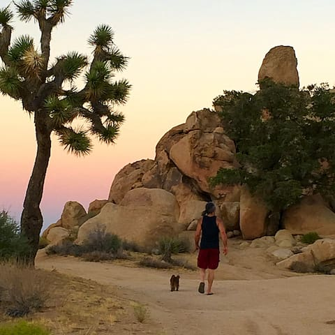 Skyline Ranch Cabin - Rustic Modern Getaway - Yucca Valley - Stuga