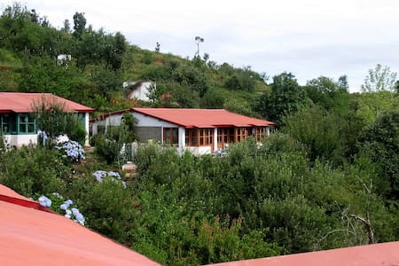 Mountain Trail Resort - Mukteshwar - Szoba reggelivel