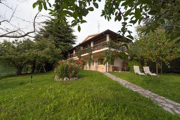 Valpolicella-Verona, villa, garden  - Negrar - Villa