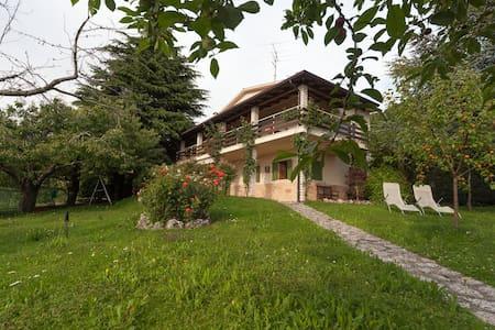 Valpolicella-Verona, villa, garden  - Negrar