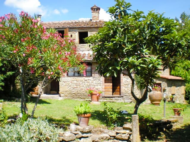 3-room semi-detached house 100 m² Loggetta