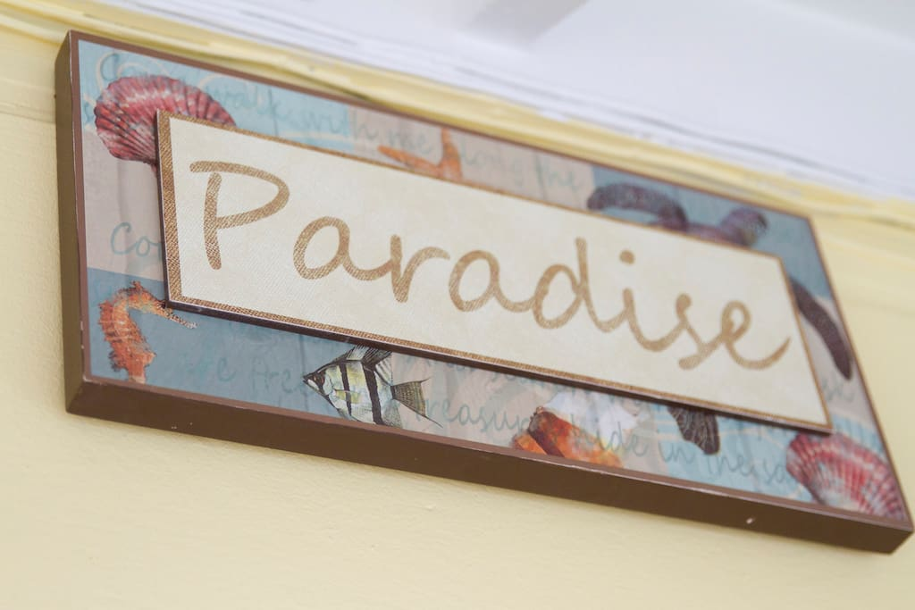 Welcome to our Paradise Studio...