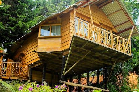 Tree House @ Los Naranjos - Los Naranjos