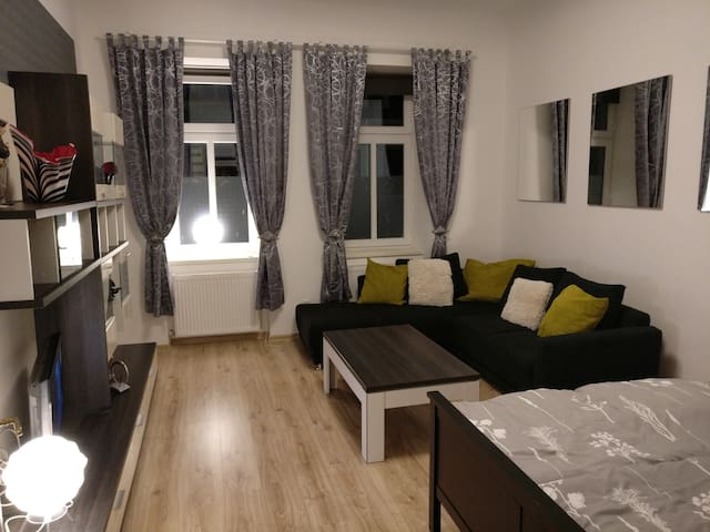 Nice apartment, central, old city of Vienna!+WLAN - Vienna - Lakás