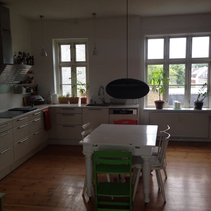 Big kitchen with dishwasher, oven, microwave and espresso maker