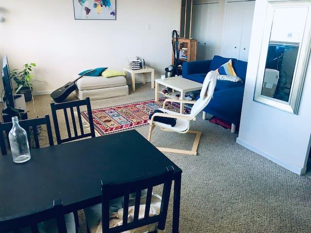 Spacious 2 bedroom apartment in downtown Hamilton