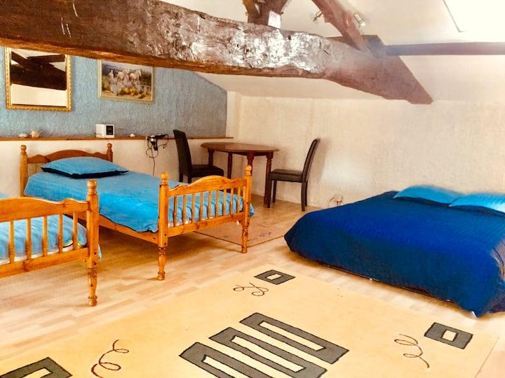 Apartment for 7 in lovely farmhouse. nr Saintes.