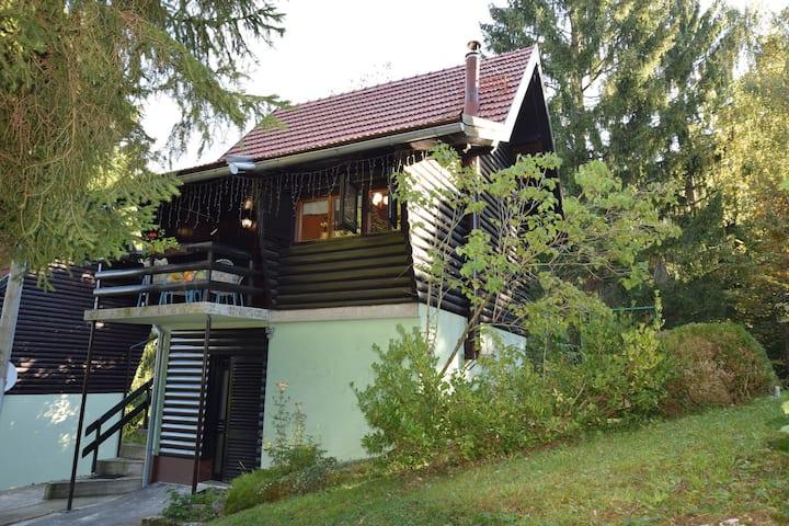 Vrijstaand vakantiehuis in Vrbovsko met dakterras