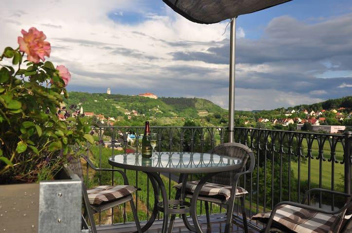 Wunderschöne Wohnung mitten im Weinberg - Freyburg (Unstrut)