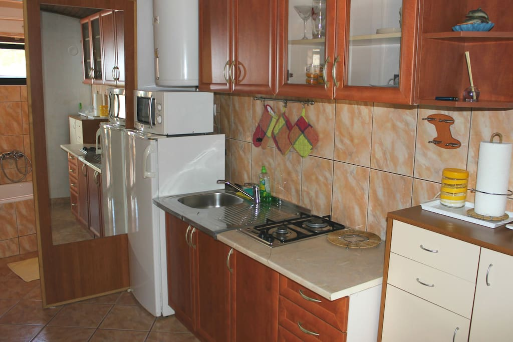 Kitchen equipped with basic cooking staff, fridge with small frizzer microwave and gas cooker