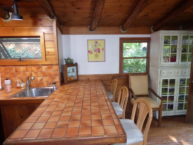 Plenty of counter space/Lake view