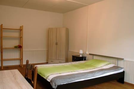 Chambre très spacieuse +25m2 - Châtel-Saint-Denis