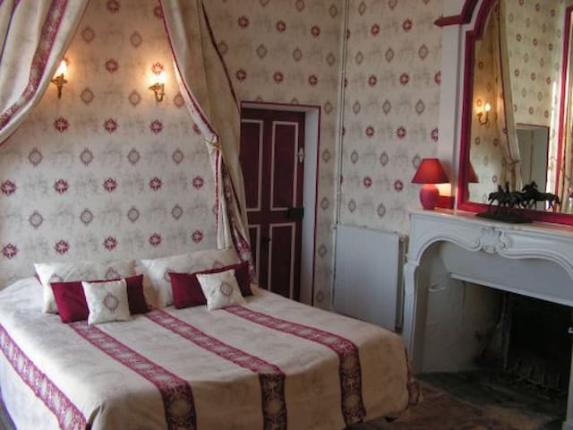 Charming Room at the Château - Gizeux - Castell