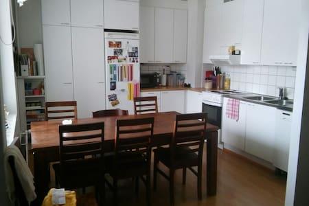 2 bedroom apartment in the heart of Helsinki - Helsinki