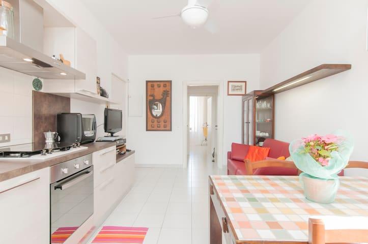 Loreto Nice Apartment