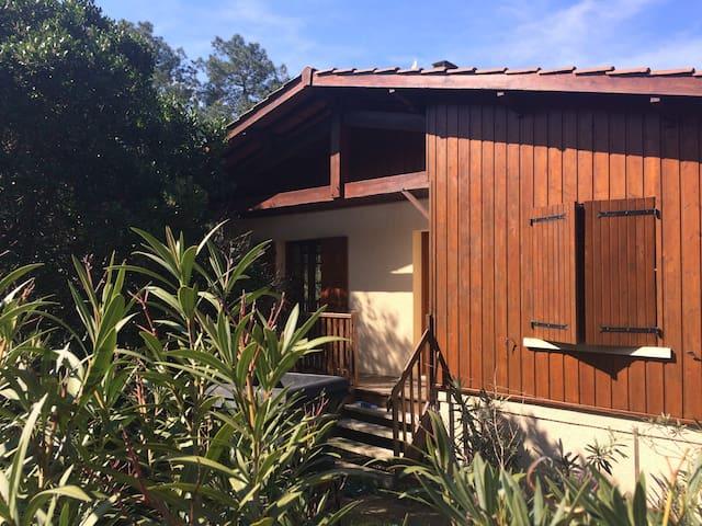 Maison Maubuisson - Carcans - Dům