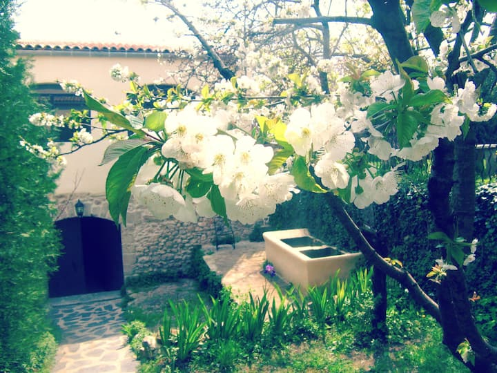 Villa de charme Les Fontaines Mas des Fontaines -