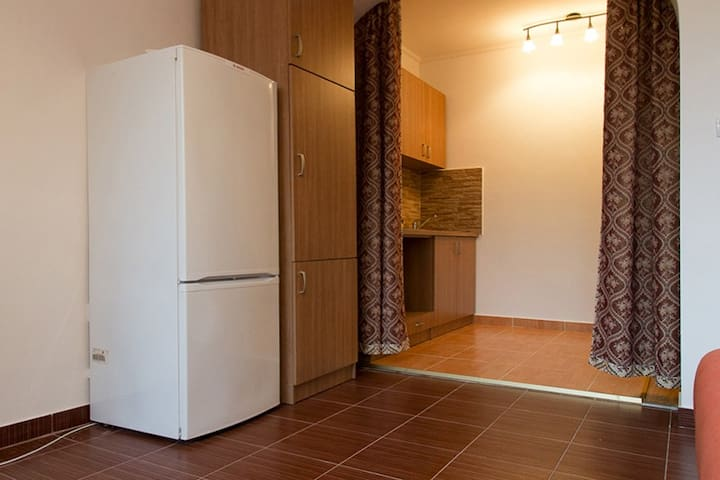 Вместительный холодильник и кухонный гарнитур