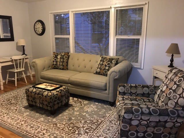 Dog friendly near BSU and Downtown