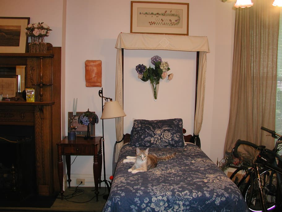 Second twin bed. A gas log fireplace separates the beds.