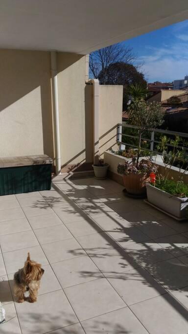 grande terrasse de 18 m2 avec salon de jardin en teck et parasol vue sur jardins