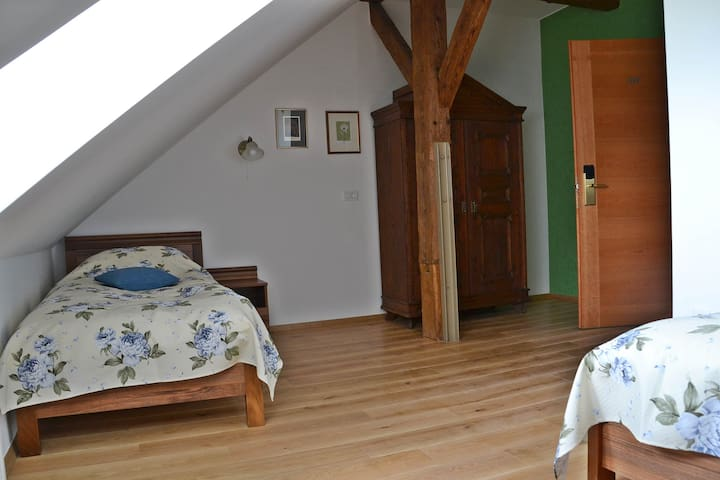 Charming rooms with a great view. - Bistra, Vrhnika - Bed & Breakfast