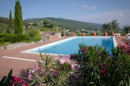 Bed and Breakfast Serena, Camera Acquario - Prato