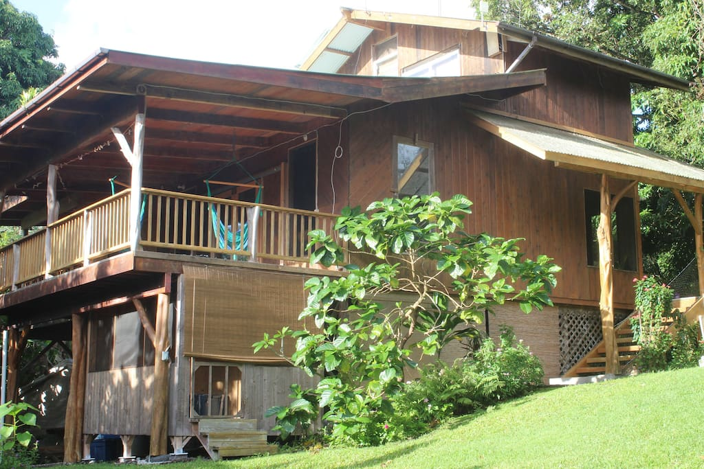 Beautiful Cedar house