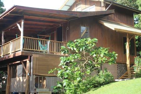 Eco-Home Walk to Ocean Tidepools  - House