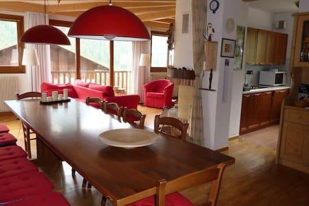 Bright flat in Cadore - Selva di Cadore - Apartamento