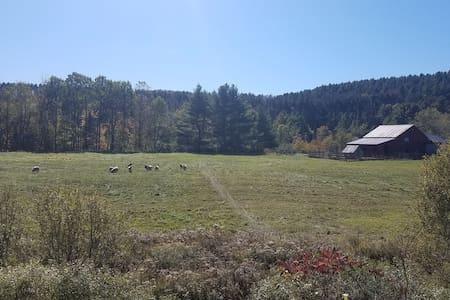 Union Brook Farm