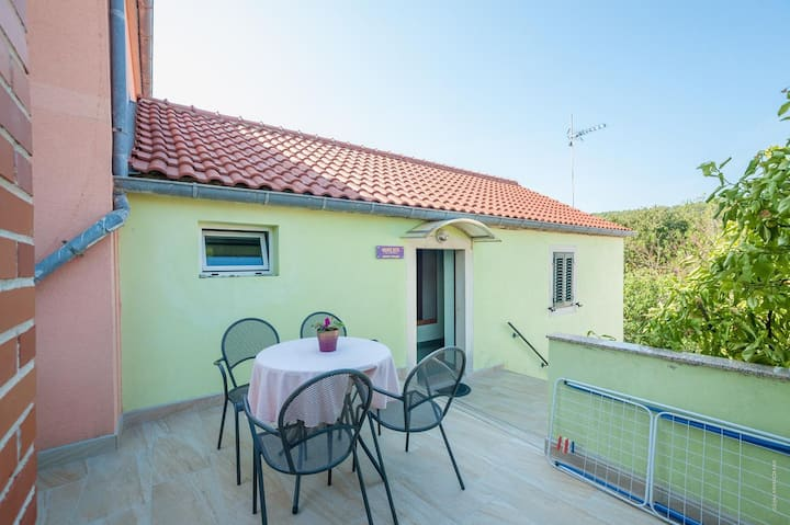 One bedroom apartment with terrace and sea view Božava, Dugi otok (A-8124-c)