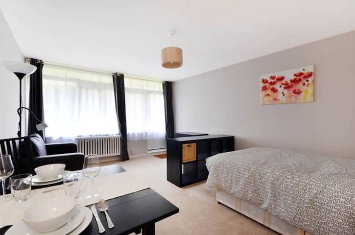 Big studio close to Victoria/Pimlico & Thames - London - House