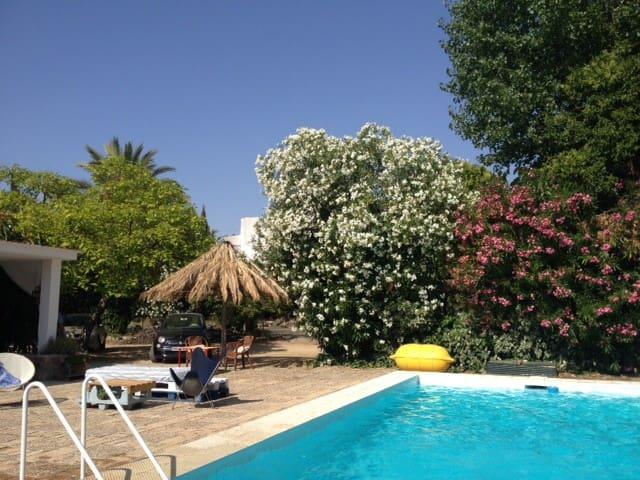Casa-chalet de los 70's con piscina - Montilla - Rumah