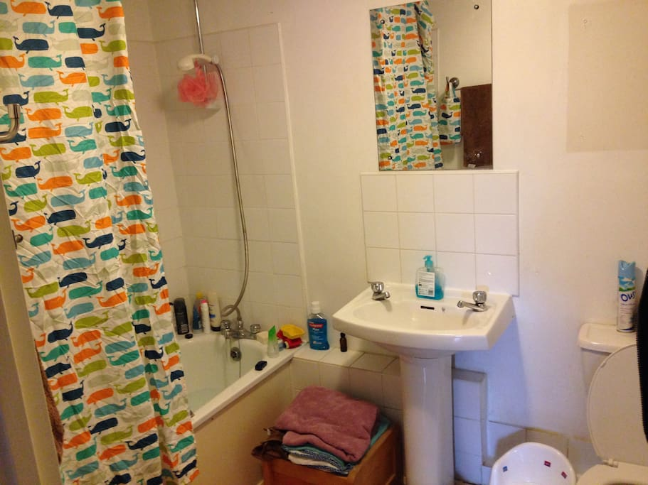 Bathroom-shower over bath