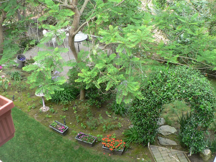 View from up top into the back garden and canyon.