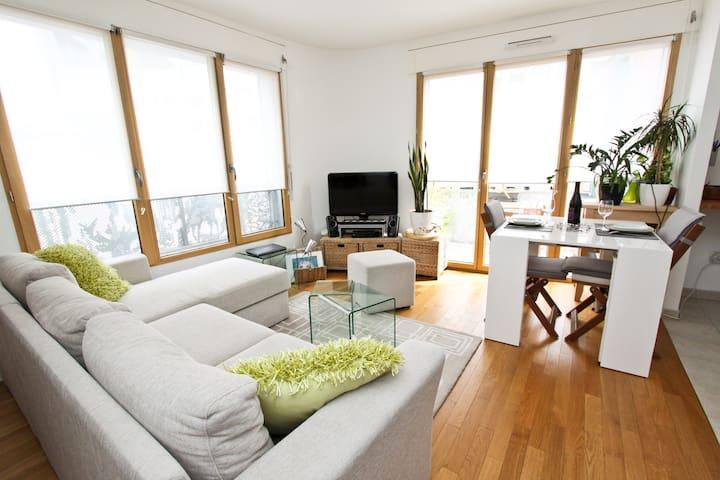 Design flat - 20' Champs Elysées