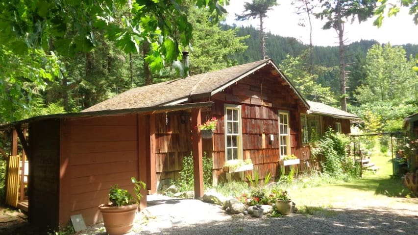 Cabin in Paradise Valley, Squamish