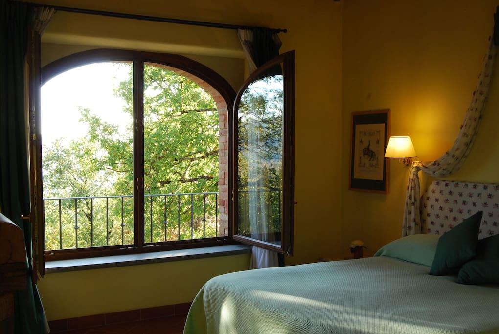 La vista sul bosco della camera da letto