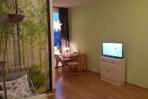 Blick in den Raum - an der hintern Wand Schrankbetten, in der Mitte Schrank und Couchecke und TV, am Fenster Miniküche und Sitzgruppe