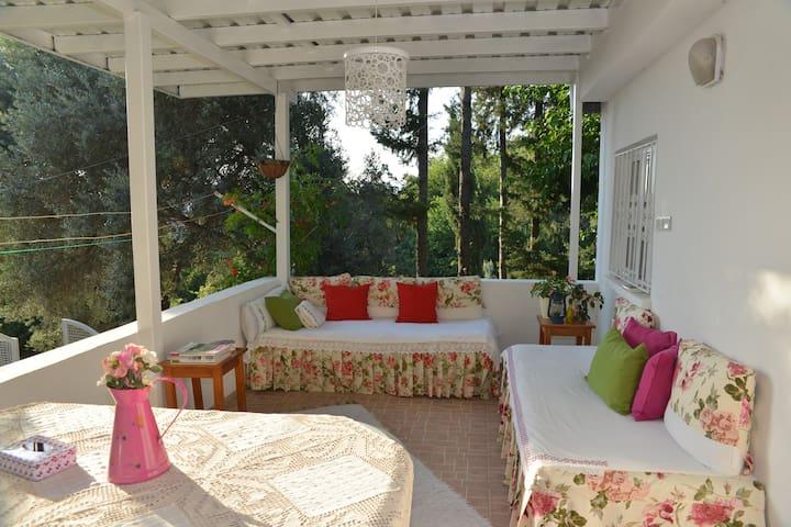 Butterfly Guest House - Uzunyurt - Villa