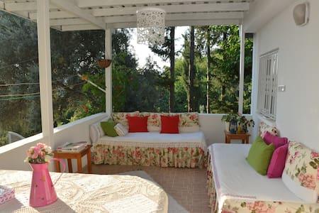 Butterfly Guest House - Uzunyurt - Βίλα