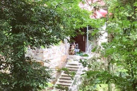 山中朴墅--欧美老别墅,核心景区--庐山会址旁,交通食宿便利。可谓【住在山海间,睡在历史里】