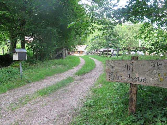 Au gros chêne - Plancher-les-Mines