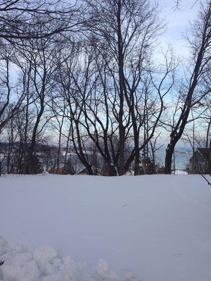 Mackinac Bluff