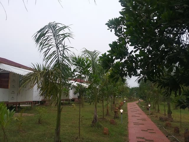 The Waterfront, Farm at Kolad,Breakfast included B