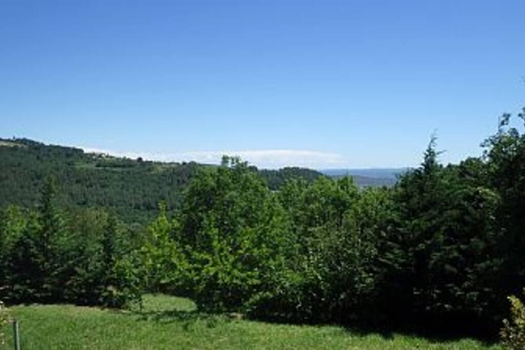 Photo vue sur le terrain