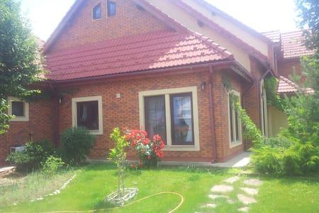 Villa for families near Bucharest - Bucharest