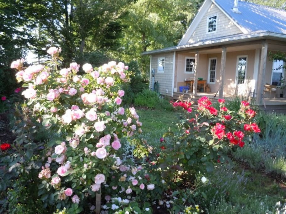 Large verandah, garden of the 2 bedroom year round cottage