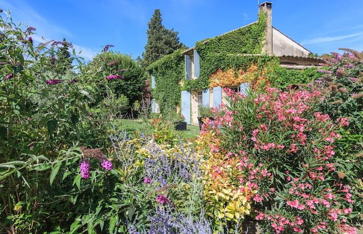 Mas provençal XIXe / proche Luberon - Carpentras - Inap sarapan